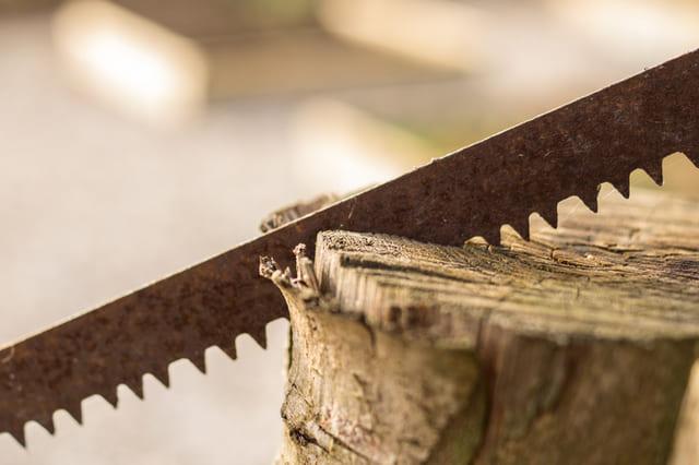 Segaccio-per-legno